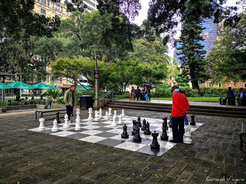 ajedrez en Sídney