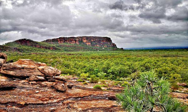 Parque nacional Kakadu y Litchfield | Qué ver en Darwin