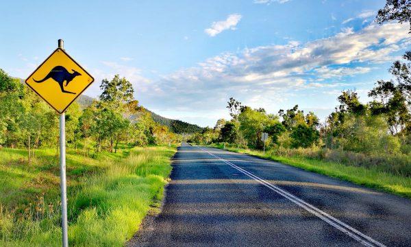 Ruta costa este de Australia | 10 días por carretera