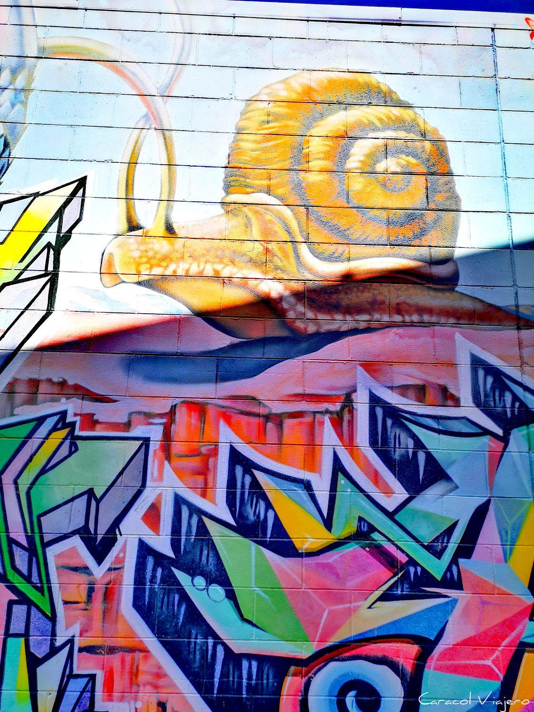 arte urbano en Alice Springs