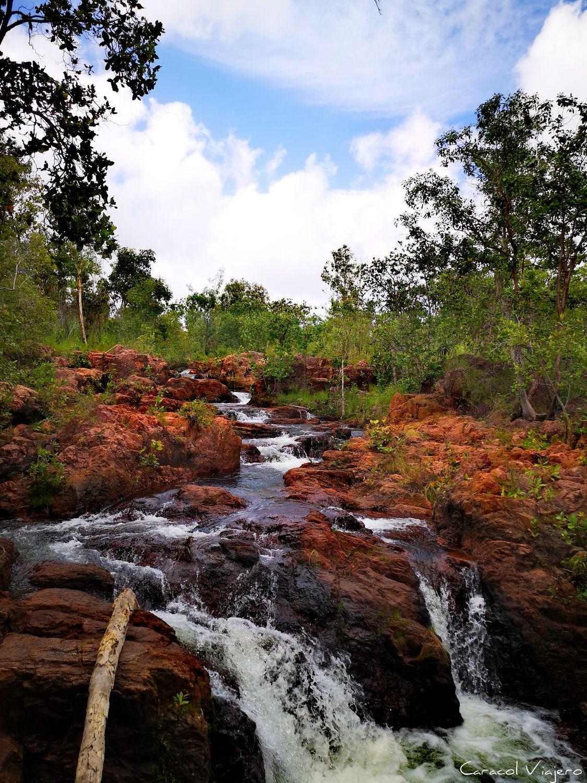 Qué ver en Darwin: Litchfield
