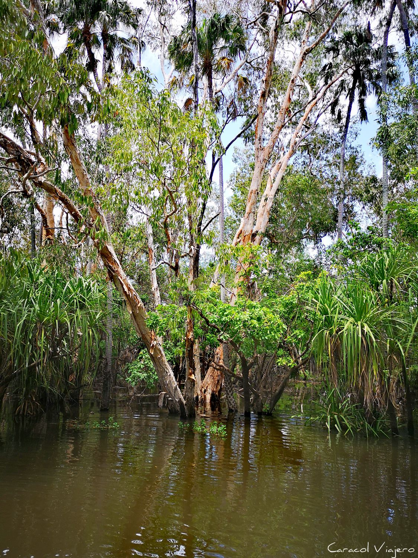 parque nacional Kakadu