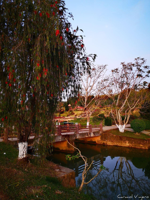Parque de las flores en Da Lat