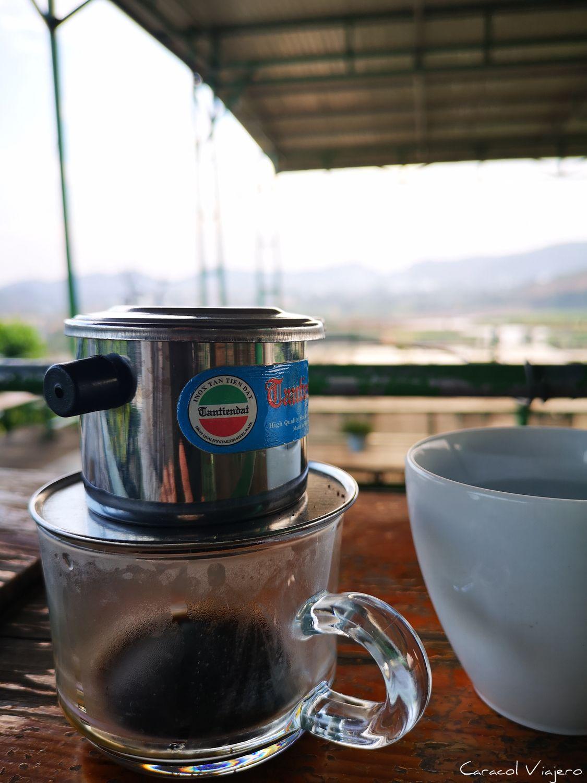 Café de comadreja