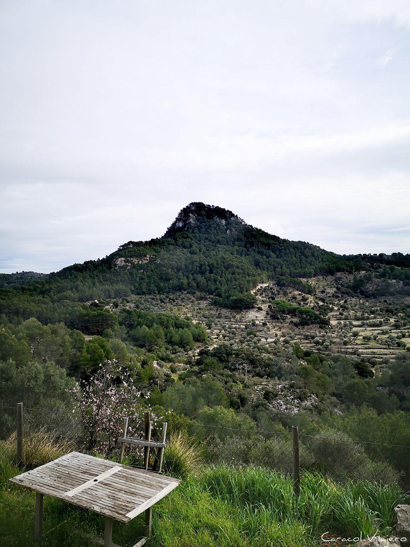 Puig de Na Bauçana, Galilea
