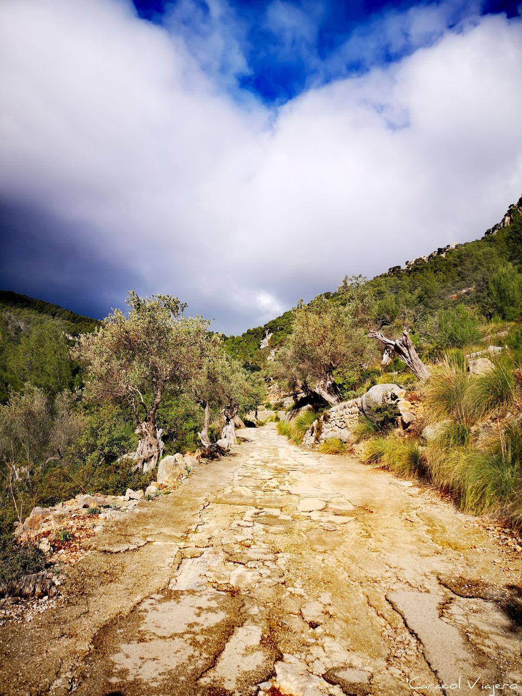 excursión al castillo Alaró