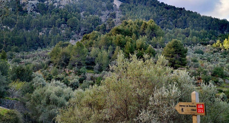 Senderismo en Mallorca | Rutas por la serra de Tramuntana