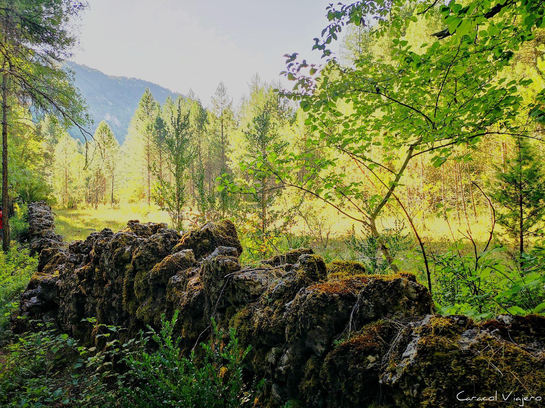 Senderismo en Serranía de Cuenca